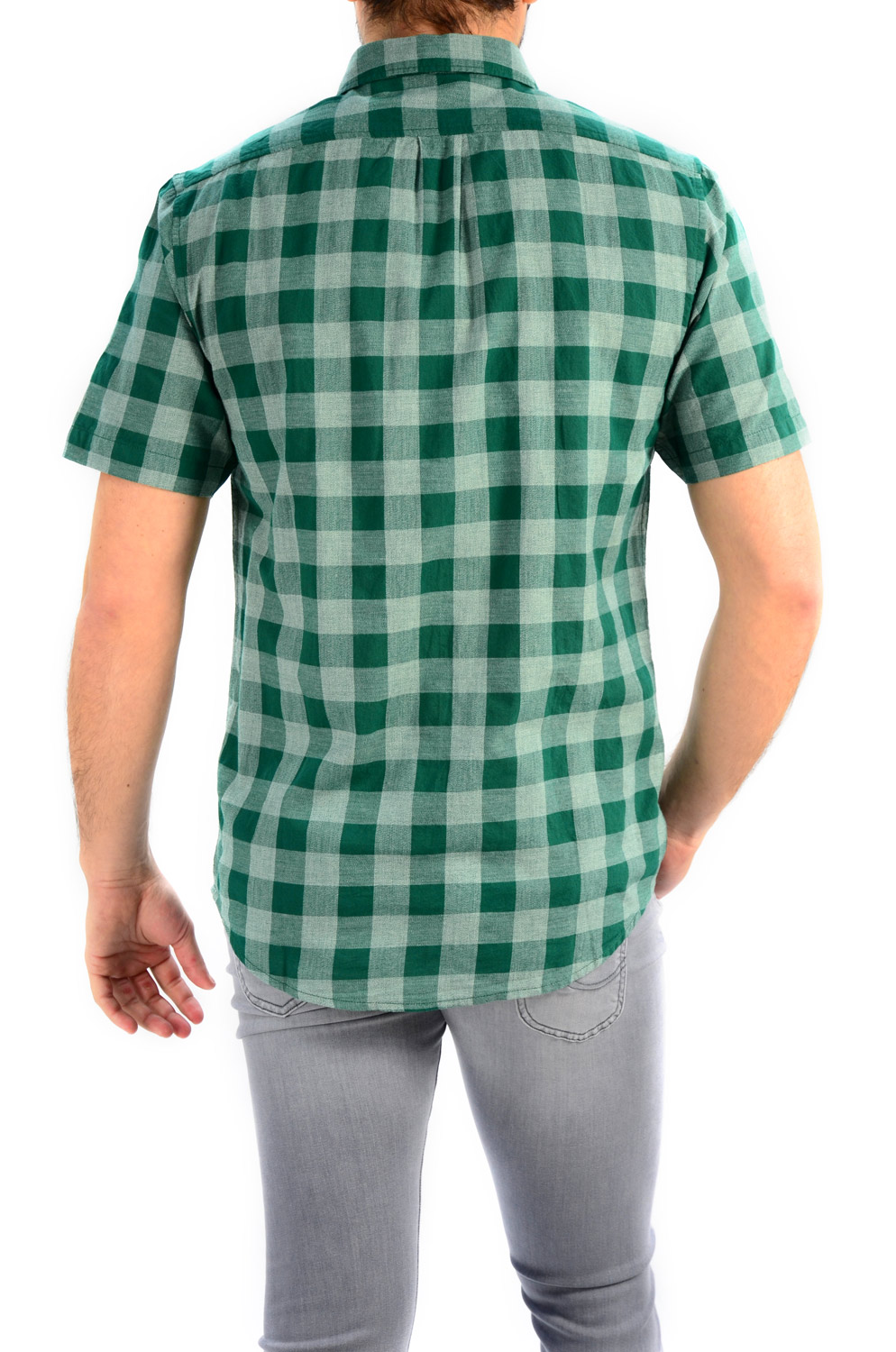 CAMISA LEE BUTTON DOWN SS EVERGREEN